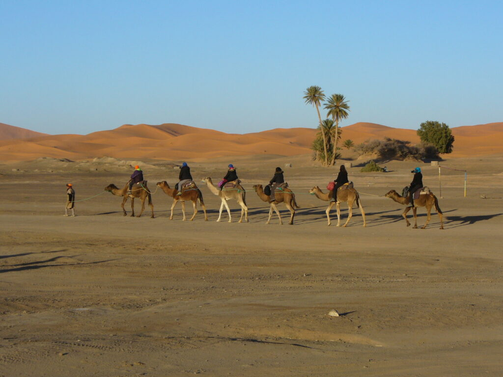 Riding a camel in Morocco