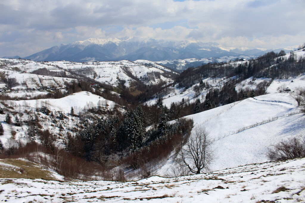 Hiking in Romania & the Carpathian Mountains