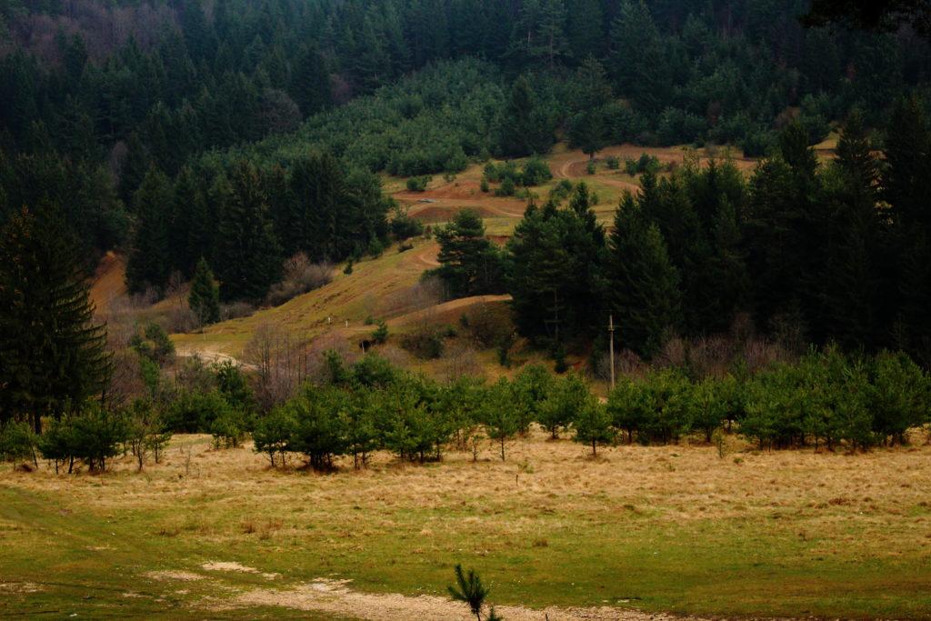 Hiking in Transylvania | Breghina Valley