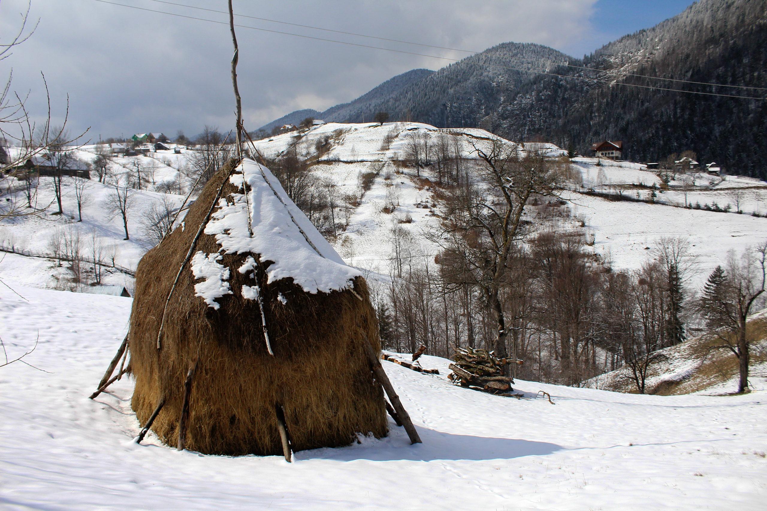 Hiking in Transylvania