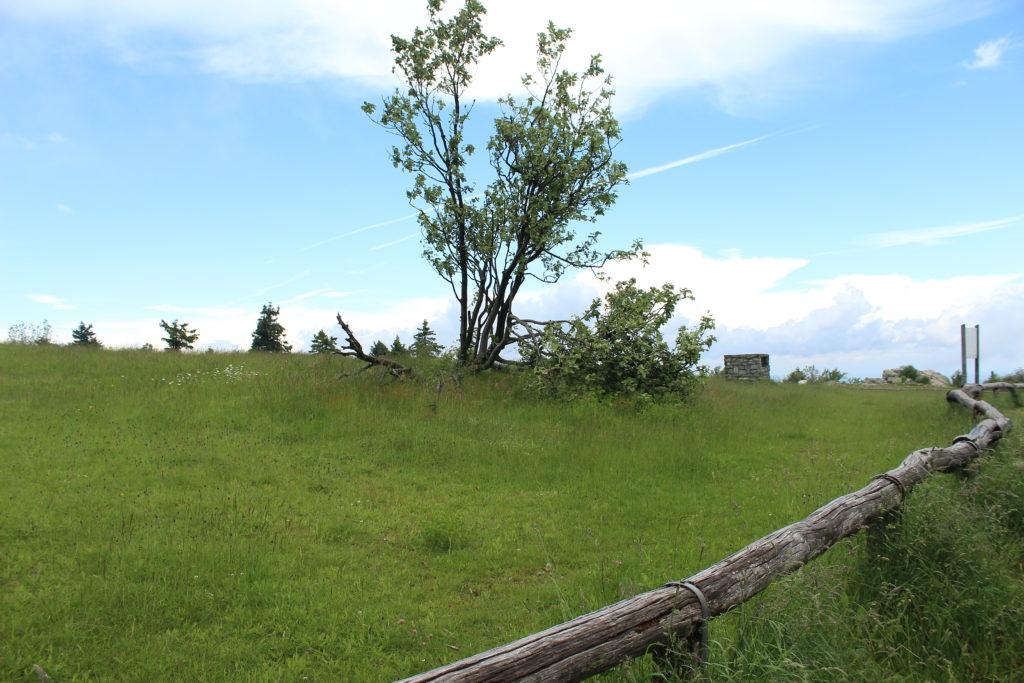 Taunus Mountains, Germany