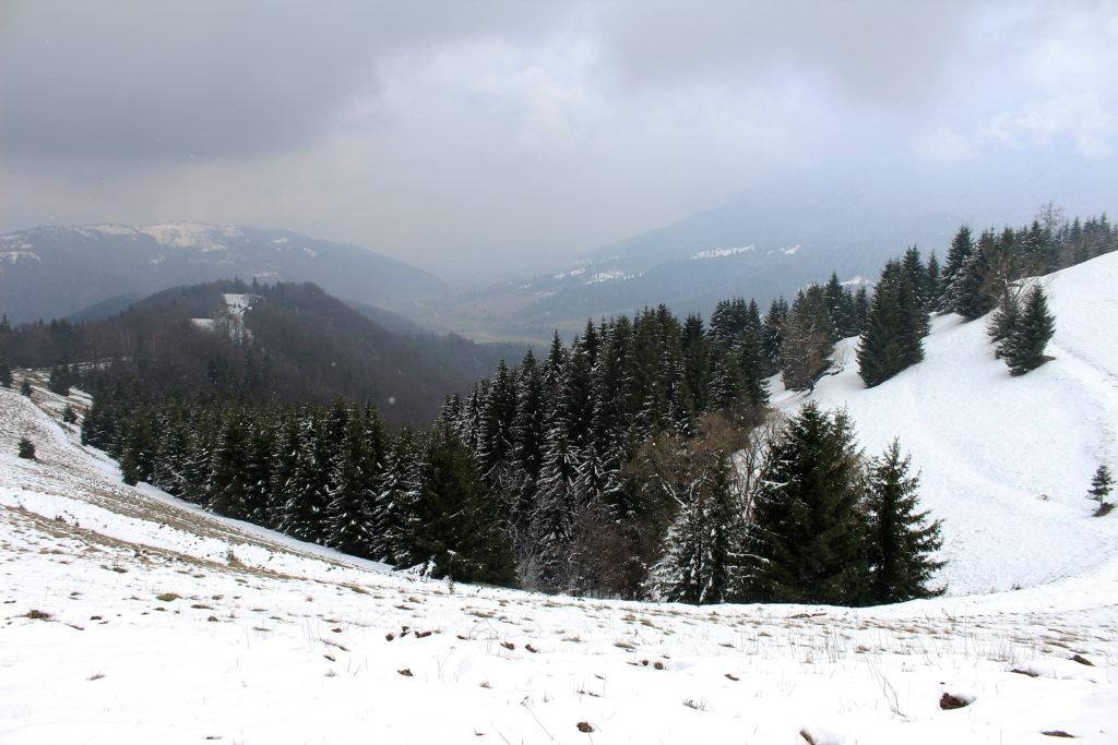 Barsa Valley | Hiking in Transylvania