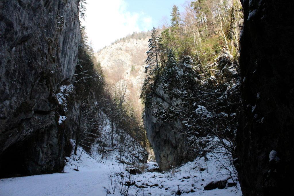 Hiking in Transylvania | Zarnesti Gorges