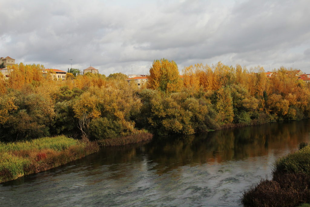 Tormes River | Best things to do in Salamanca