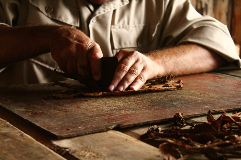 How Cuban cigars are made.