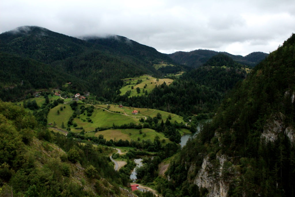 Tara National Park   Off the beaten path in Serbia