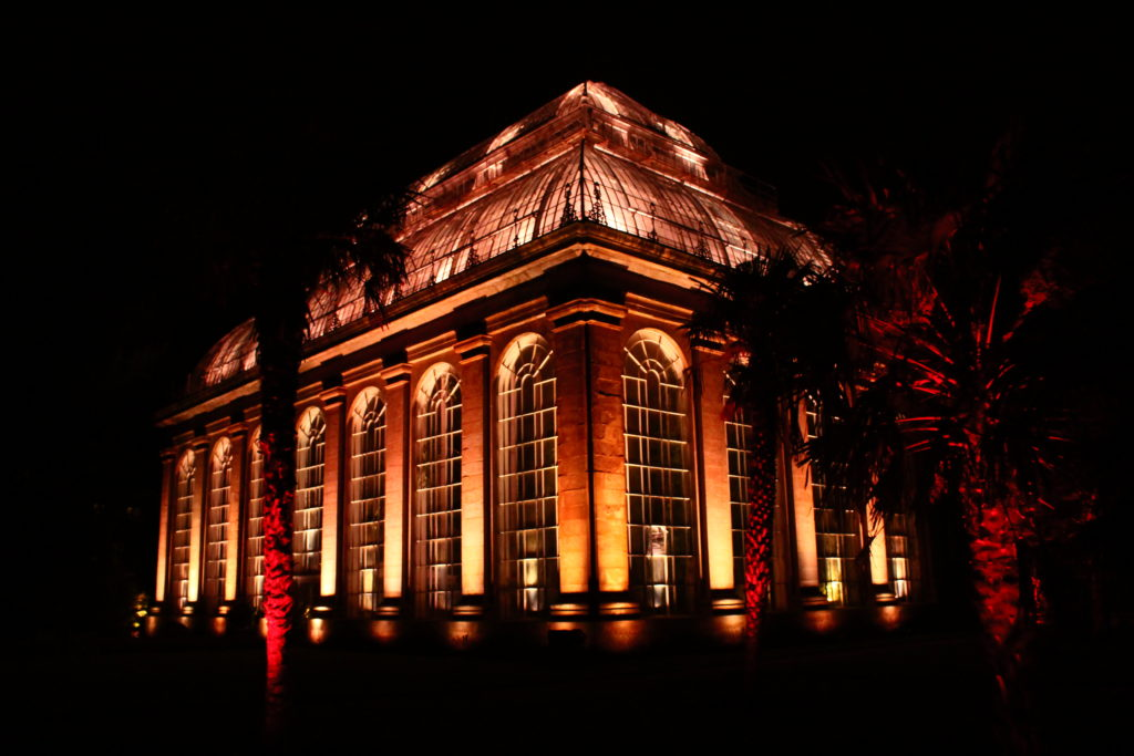 Christmas at the Botanics | Things to do in Edinburgh in winter