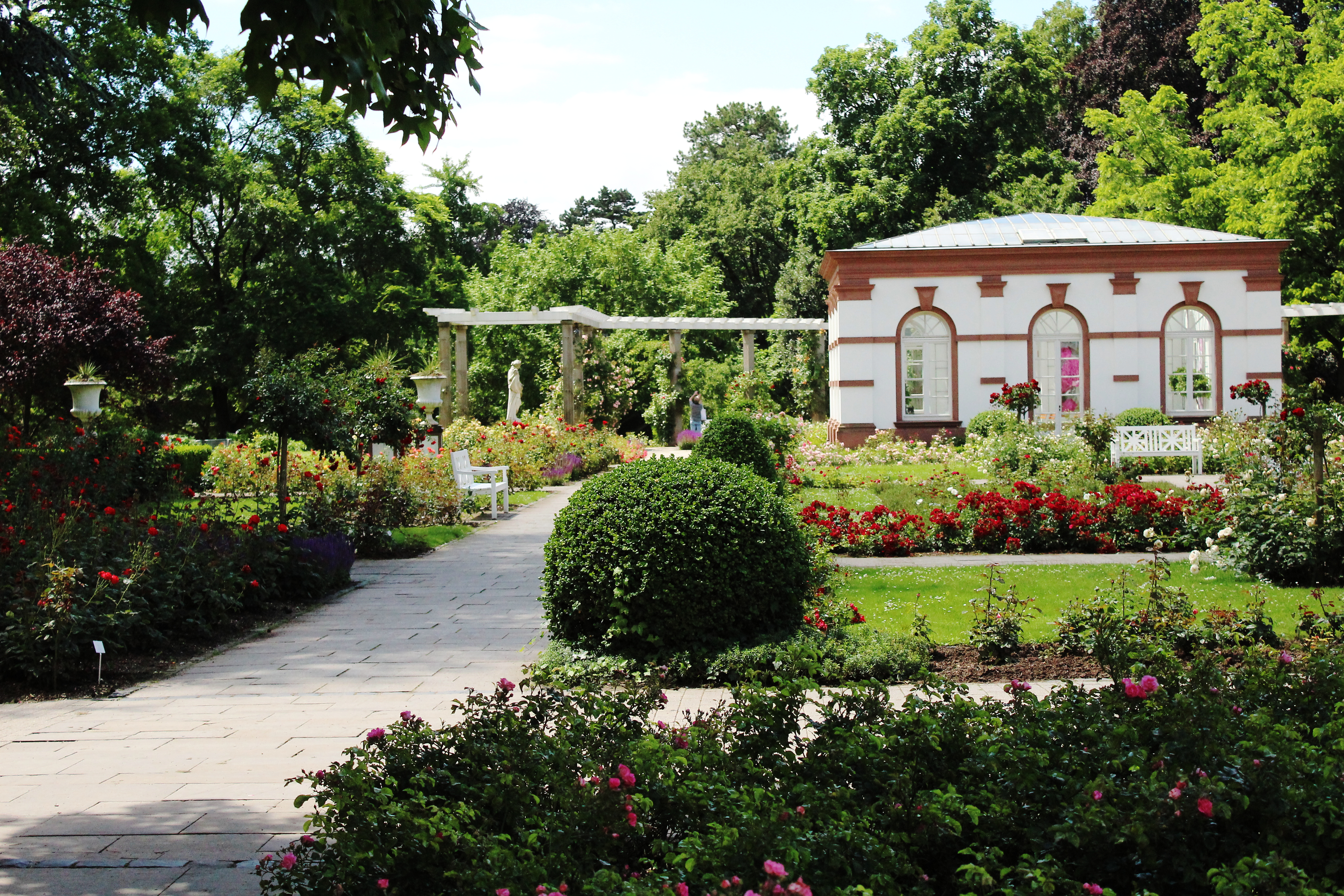 Palmengarten, a botanical garden in Frankfurt.