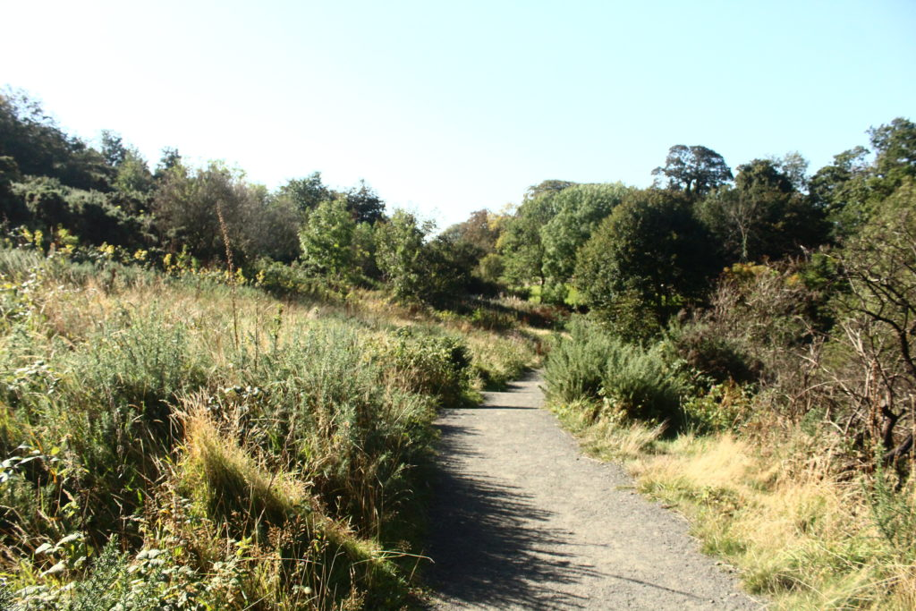 Easter Craiglockhart Hill | Best Hikes in Edinburgh