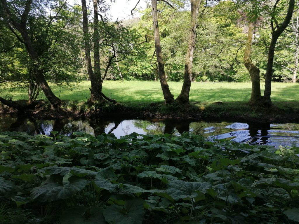 Swimming in Derbyshire | Best UK staycation ideas
