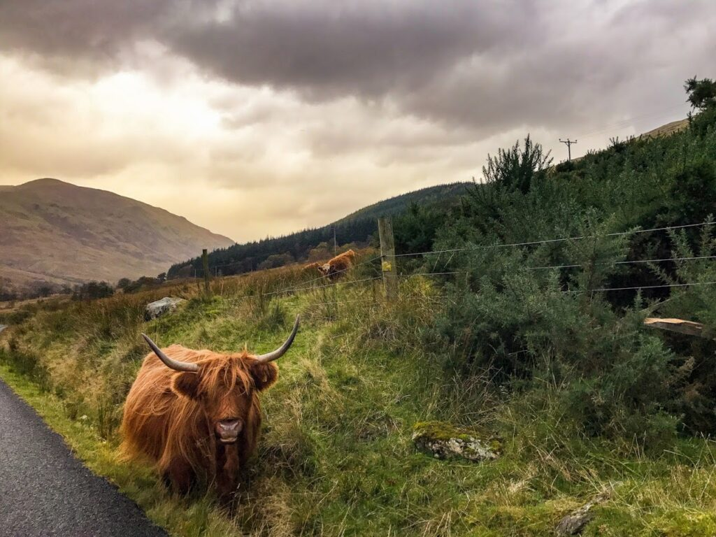 Loch Lomond | Scotland Staycation Ideas